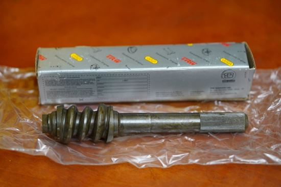 Picture of Steering Worm